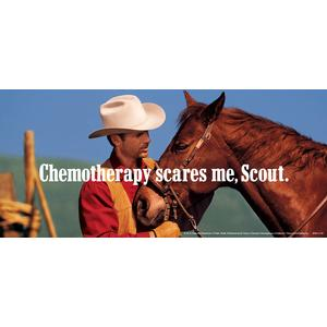 Chemotherapy Scares Me, Scout. poster