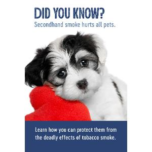 Secondhand Smoke and Your Pet – Brochure