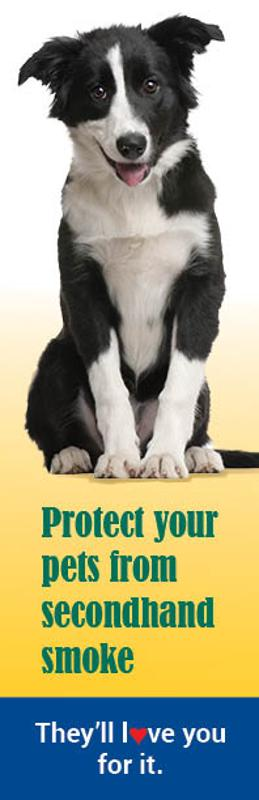 Protect Your Pets from Secondhand Smoke