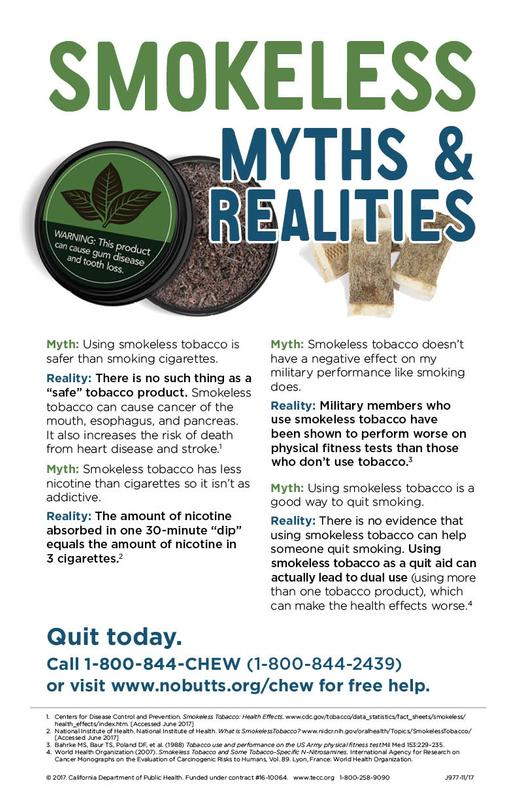 Smokeless Myths and Realities Poster - Military - Poster